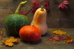 Jesieni banie na drewnianym tle Obraz Stock