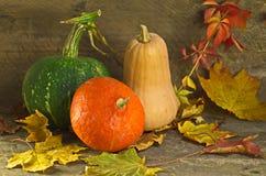 Jesieni banie na drewnianym tle Fotografia Royalty Free