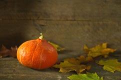 Jesieni banie na drewnianym tle Obrazy Royalty Free
