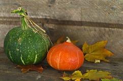 Jesieni banie na drewnianym tle Obraz Royalty Free