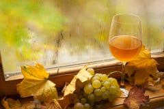 Jesieni biały wino Obrazy Royalty Free