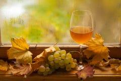 Jesieni biały wino Zdjęcie Royalty Free