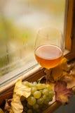 Jesieni biały wino Zdjęcia Royalty Free