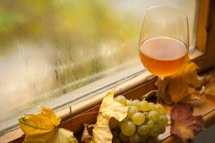 Jesieni biały wino Zdjęcia Stock