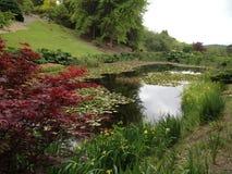 Jesieni brzmienia jeziorem zdjęcie royalty free