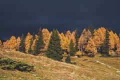 Jesieni burza obrazy royalty free