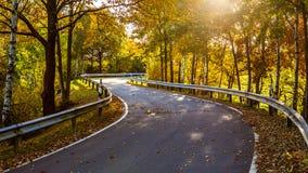 Jesieni chylenie Fotografia Royalty Free