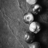 Jesieni ciemny tło lub rama spadać kolorów żółtych liście i dojrzali czerwoni jabłka Rama dla teksta lub fotografii Obowiązujący  Zdjęcie Royalty Free