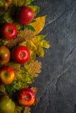 Jesieni ciemny tło lub rama spadać kolorów żółtych liście i dojrzali czerwoni jabłka Rama dla teksta lub fotografii Obowiązujący  Obrazy Royalty Free