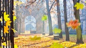Jesieni colonade z bramą zdjęcie stock