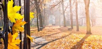 Jesieni colonade z bramą Zdjęcie Royalty Free