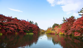 Jesieni colour jezioro Obrazy Stock