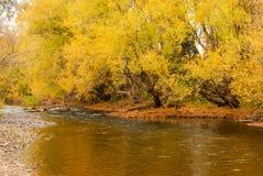 Jesieni Colours zdjęcia stock