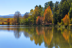 Jesieni colours odbijający na wodzie Zdjęcia Royalty Free