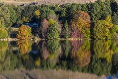 Jesieni colours przy wodą Zdjęcie Royalty Free
