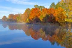 Jesieni colours w ranku Obrazy Stock
