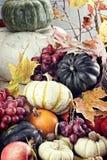 Jesieni Cornucopia Obrazy Royalty Free