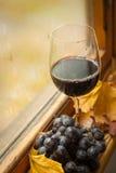 Jesieni czerwone wino Fotografia Royalty Free