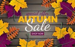 Jesieni 3d sprzedaży sztandar, papier rama, kolorowy drzewo opuszcza na drewnianym tle Jesienny projekt dla sezon jesienny karty, royalty ilustracja