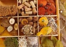 Jesieni dekoraci składniki Obrazy Stock
