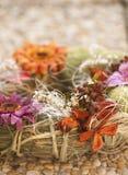 Jesieni dekoracja Zdjęcie Royalty Free