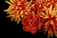 Jesieni dekoracja Obrazy Stock
