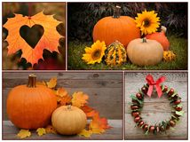 Jesieni dekoracja i bania dziękczynienie Zdjęcia Royalty Free