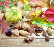 Jesieni dekoracja - jesieni żniwo Zdjęcia Royalty Free