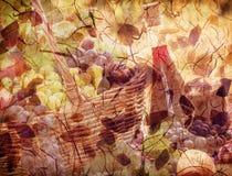 Jesieni dekoracja - jesieni tło Fotografia Stock