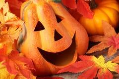 Jesieni dekoracje Obraz Royalty Free