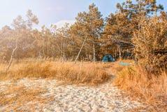Jesieni Dennego wybrzeża Czarny krajobraz fotografia stock