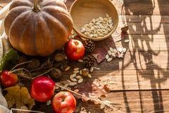 Jesieni dokrętki i warzywa Zdjęcie Stock