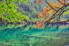 Jesieni dolina Fotografia Royalty Free