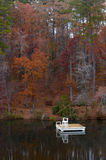 Jesieni dopłynięcie Fotografia Stock