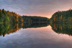 jesienią drewna Zdjęcie Royalty Free