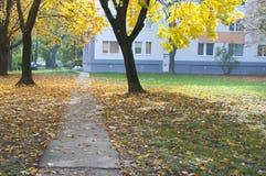 Jesieni droga przemian 4 Obrazy Royalty Free