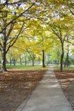 Jesieni droga przemian Zdjęcie Stock