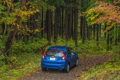 Jesieni droga z samochodem w Japan Obrazy Royalty Free