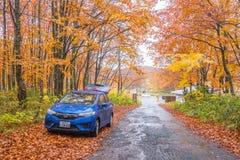 Jesieni droga z samochodem w Japan Zdjęcia Stock