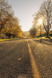 Jesieni drogi Nowa Zelandia Zdjęcie Royalty Free