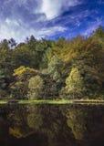 Jesieni drzew odbicie Fotografia Royalty Free