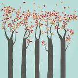 Jesieni drzewa Zdjęcia Royalty Free