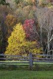 Jesieni drzewa i rozłamu Sztachetowy ogrodzenie zdjęcia royalty free