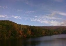 Jesieni drzewa na jeziorze i liście Obraz Stock