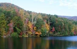 Jesieni drzewa na jeziorze i liście Zdjęcia Stock