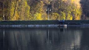 Jesieni drzewa o jeziorze Zdjęcia Royalty Free