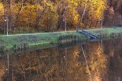 Jesieni drzewa o jeziorze Fotografia Royalty Free