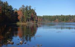 Jesieni drzewa odbijający w jezioro wodzie obraz stock