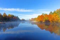Jesieni drzewa odbijają na wodzie Zdjęcia Royalty Free