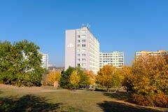 Jesieni drzewa przy projekt budowy mieszkań obrazy stock